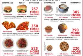 Fast Food High In Calories Or Portions Too Big